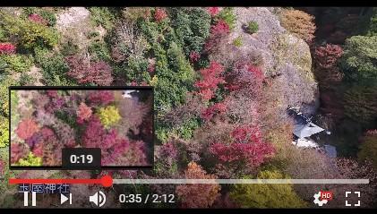英彦山の紅葉をドローンで撮影した4K動画.jpg